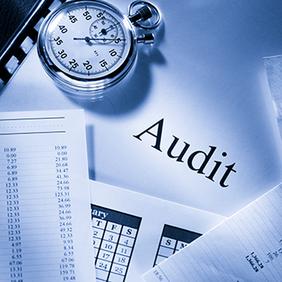 Cabinet Audit