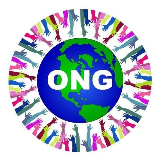 Organisation Non Gouvernementale